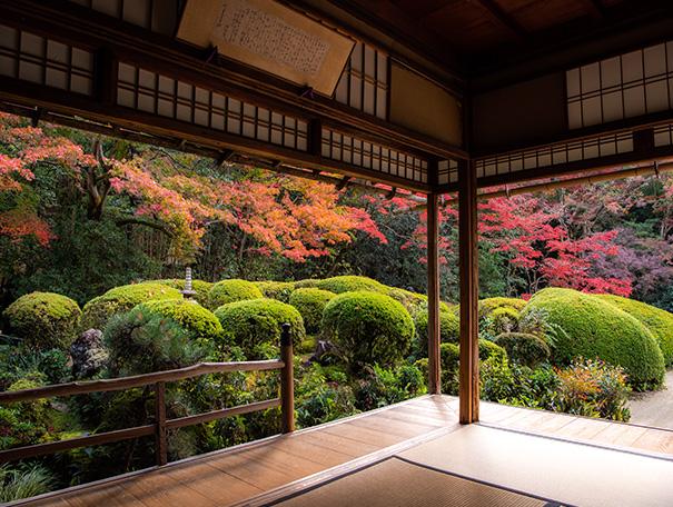 京都ブランド・京都経済の更なる活性化